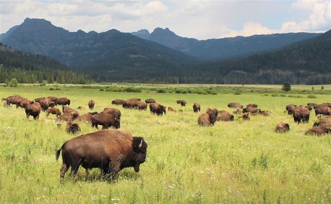 TOP 10 najciekawszych parków narodowych świata