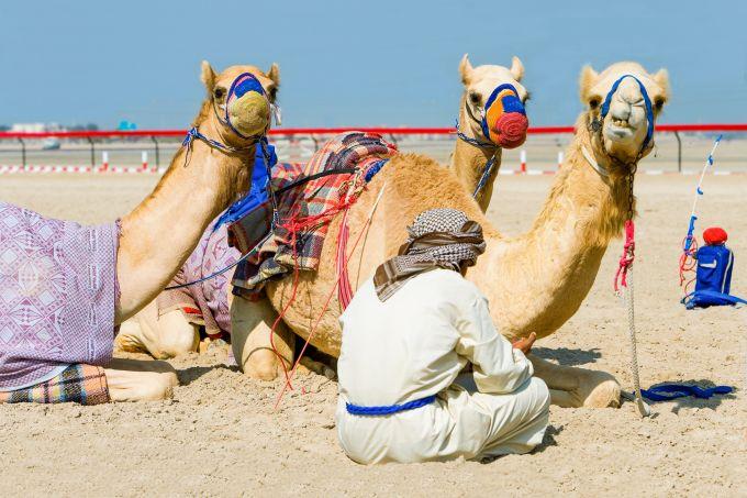 Bilet do Dubaju. Kiedy najtaniej można zarezerwować?