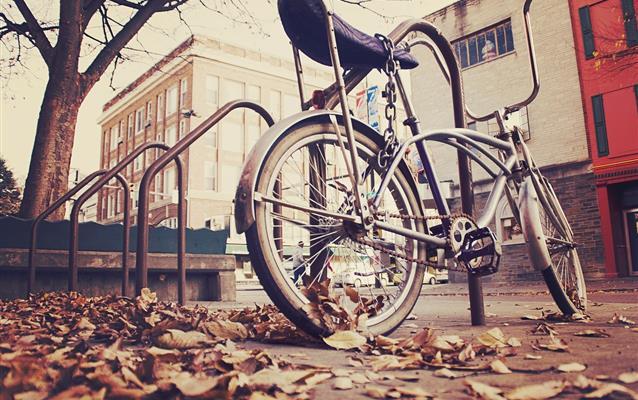 Bagaje speciale (cărucioare de copii, biciclete, schiuri)